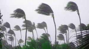 HurricaneWinds
